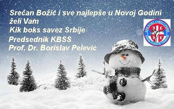 bozic6212